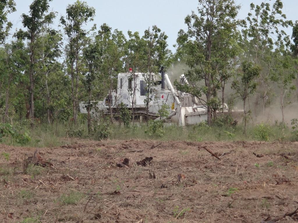 CBPD 灌木地を地雷処理するDM