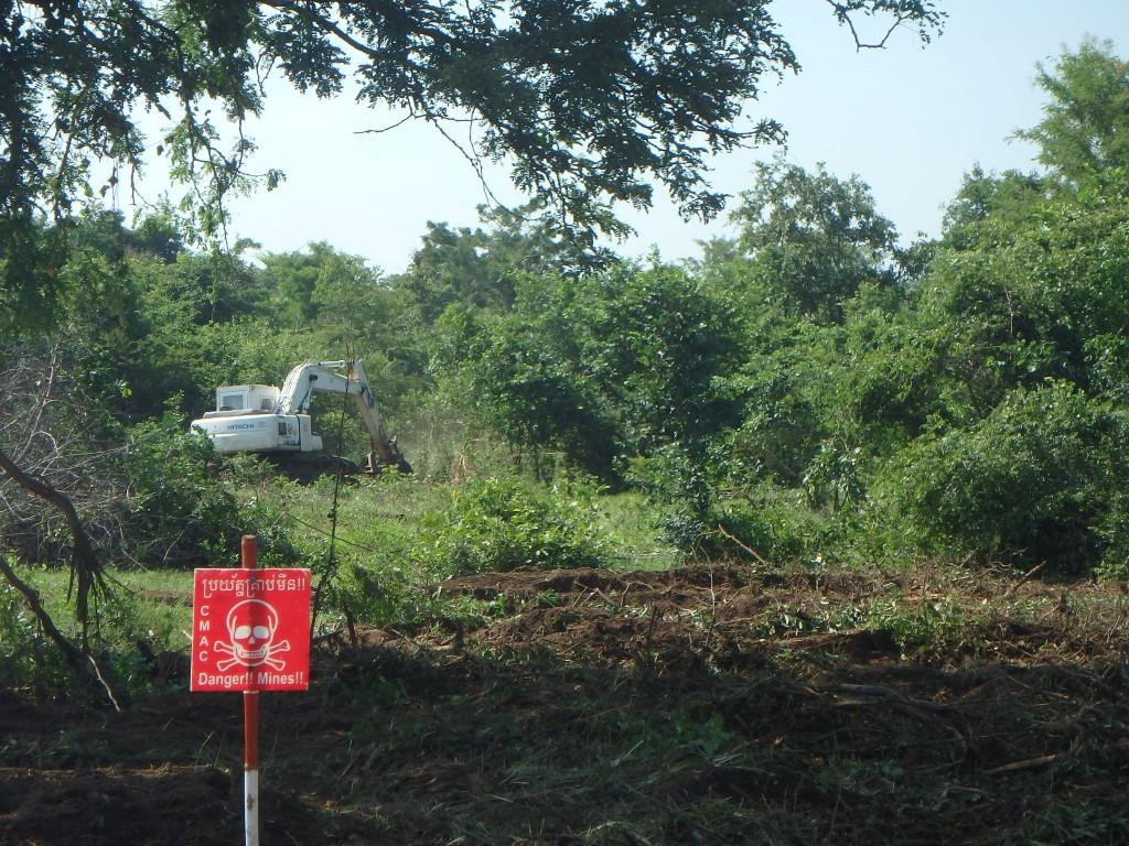CBPD Cブロック BCによる灌木除去