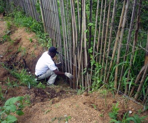 外柵の整備